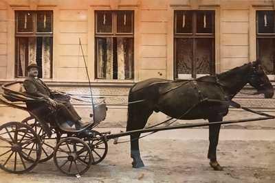 Die Geschichte vom Hotel Dreikönigshof