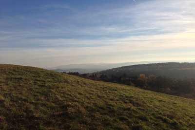 Ausblick über das Weinviertel - Hopfeld Dreikönigshof